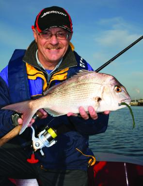 Mike Hodges with a pinkie snapper taken from the Yarra River on a Berkley Gulp Turtleback Worm.