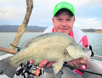 Although Eildon might be the home of trout, it's also full of golden perch and Murray cod.