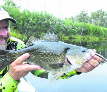 Big bass will monster surface lures like Hurricane Bent Minnows. Fish them slow with short pauses and sharp rips.