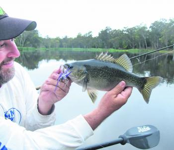 The author's favourite spinnerbait is the smallest and lightest he can find. They work best slow rolled around structure and are fairly snag proof.