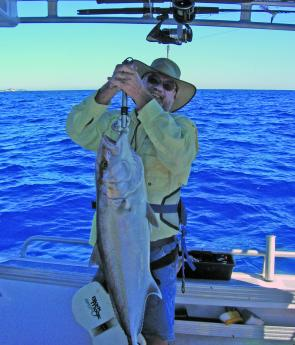 Amberjack will be bullying the masses of pearlies and juvenile snapper on Wide Caloundra.