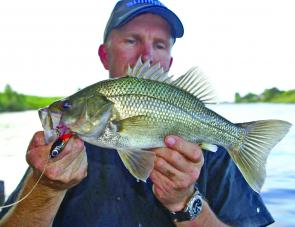 Bass are in full swing with most freshwater sections producing fish daily. Enjoy the Spring run of bass, it's arguably the best time of year to target them.