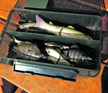 Looking for top shelf storage for your swimbaits? Look no further than the Versus range.