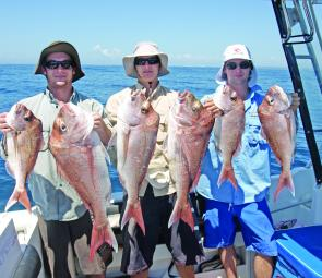 Six snapper caught by the boys on an offshore expedition.