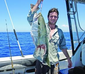 An estimated 25kg yellowtail kingfish that was taken by a shark.