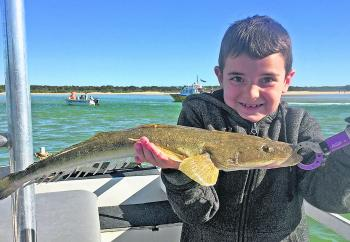 Young Owen Tweed from Melbourne boated this 58cm flathead from the Noosa River.