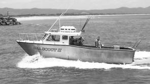 The Sea Scout II, the Rocks Charters' diesel-powered 11m alloy fishing vessel, heads home through the Macleay River bar.