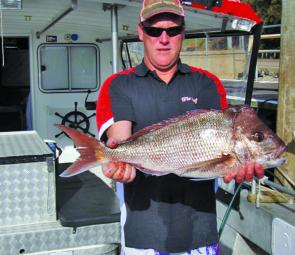 Snapper have been great and there's the chance of more this month. Pic courtesy Andy Legge