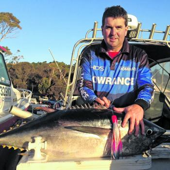 I recently returned from a trip to Tasmania for the SBT Championship. Quality tuna like this one will be off our part of the coast at some stage in the season as well – with a bit of luck. This one was taken on a Colorato Lures slant head lure.