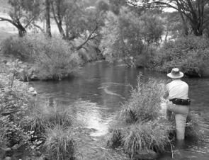 Robin Widdowson on the Bundarra River, which despite its low water level is still worth fishing.