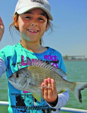 Bream numbers should flourish in the coming months. Josie caught this one in the Brisbane River.