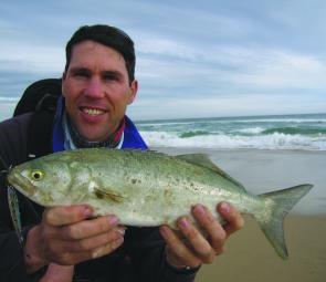 Casting metal lures into the surf from the beach between Thurra and Mueller rivers was a productive way to catch both salmon and tailor.