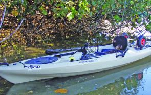 The difference with the Tarpon from other standard kayaks is that it has a long list of extra features.
