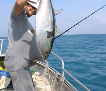 A longtail tuna taken in 8m of water.