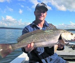 The author with a school jewfish caught by slow trolling a big deep diver. June can still be a good month for mulloway from Brisbane Waters or the beach.