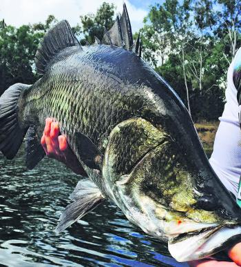 Christoper Stolk with this fine specimen from Awonga Dam.