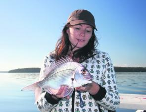 Legal-sized snapper are now common in the recreational fishing haven of St Georges Basin.