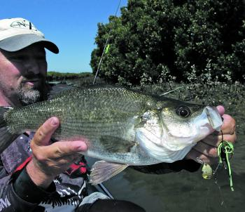 The author with a thumper EP – his first one caught on a spinnerbait lure.