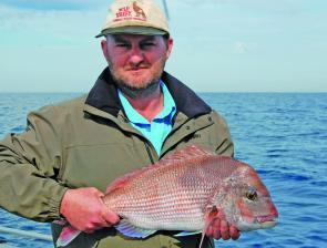 Snapper to 50cm are a sign of bigger things to come.