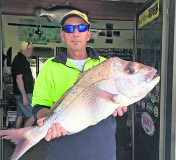 Woombah local Dan recently had a great session off the Bluff, catching squire, bream and mulloway.
