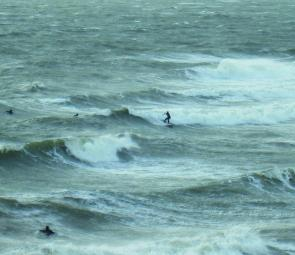 The local Mornington surfers enjoy some ripper waves right on their doorstep during a fierce northwesterly blow.