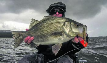 This trophy sized EP was caught during a cold, wet and windy winter's day on a Strike Pro Bass-X.