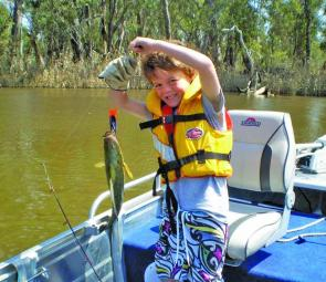 Six-year-old Harry Wetton caught his first golden perch on a trolled purple StumpJumper.