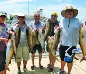 There's been plenty of school sized amberjack keen to eat livies or jigs on the wider grounds.