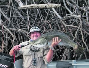 Barramundi are back on the hit list! After the flooding recedes, the fishing should go nuts.