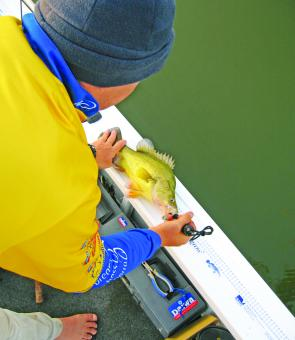 The wide gunwales are the perfect place for applying the various measuring stickers you come across. This makes it easy to measure the length of fish, just make sure a bit of water has been splashed on the surface to cool and wet it and make sure you