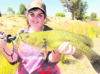 This month's author, Hayley Mcdonald with a great example of what fishing through the day can produce.