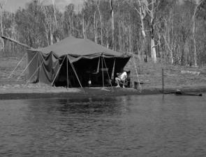 The distant weigh and release tent allowed anglers fishing up the top of the lake to get their barra or bass back for weigh in and release without risking them dying.