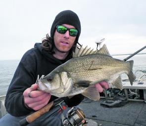 Estuary perch are in good numbers and can be found for anglers putting in the time.