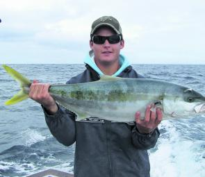 Awesome yellowtail kingfish are still about, but will decrease in numbers as water cools.