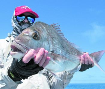 Snapper become a staple in winter for anglers in the Hervey Bay region.