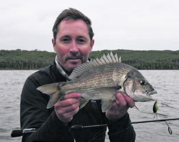 The bream action has been at it best early in the morning.