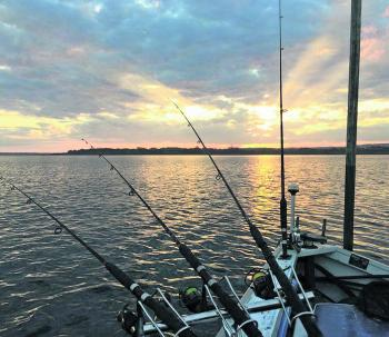 Early and late starts have been the key to scoring a fresh feed of fish.