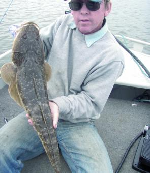 Flathead should become more regular catches in the estuary this month.