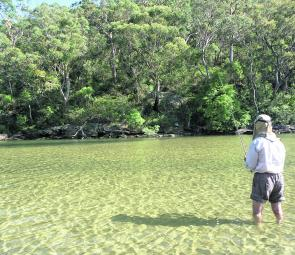 Wading the shallows and casting small surface poppers and stickbaits for bream and whiting is an enjoyable way to pass a few hours on the Hawkesbury.
