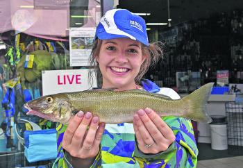 Taylah Egea won the $50 Davo's Fish of the Week prize with the 41cm, elbow-slapping whiting she caught in Weyba Creek.