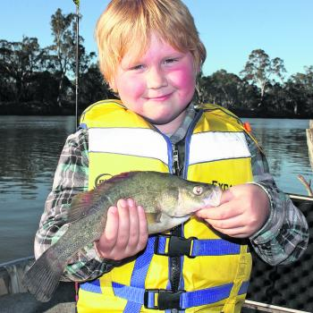 Jack Menhennett, 7y/o from Mildura, with a decent little summer yellowbelly. This fish was caught on a cocktail of shrimp and worm around the snags.