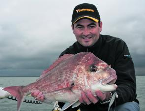 Snapper, like this early season specimen, are still on offer out wide from Mornington and Mount Martha.