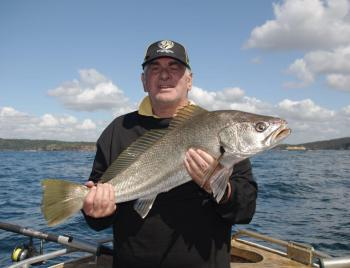 Now is the time of year to find mulloway as they follow the mullet run.