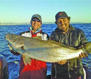 Any deep holes or entrances will hold decent mulloway. Live herring for bait is a popular method to tempt a big specimen.