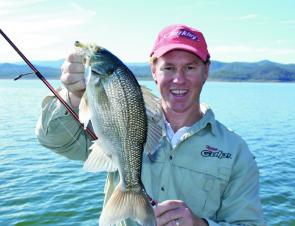 Deep schooling bass can often be tempted on spinnerbaits. Keeping the lure deep by using light line is the key.