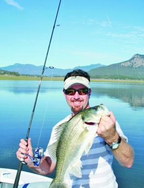 This hungry Moogerah bass has engulfed the lure. This isn't uncommon to see when fish are feeding ferociously. Keep a pair of long nosed pliers handy to remove the hooks.