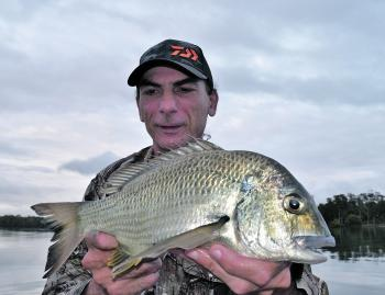 The author with an average bream from Tuggerah Lake that snatched a small vibe worked through the shallows. Plenty of bream like this are on offer during March.