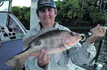 Helen Johnson from Bundaberg fished both events and walked away with the Senior Female category in the statewide species challenge.