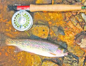 November should see the flyfishing improve in the high country.