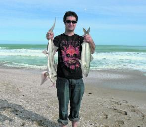 Australian salmon and elephant fish are very common catches on the beaches between Robe and the Coorong over winter.